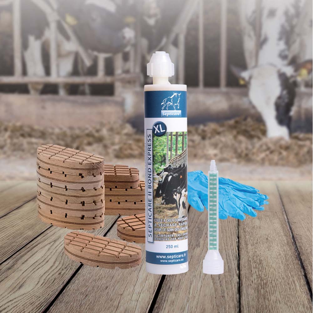 Septicare II Hoof Care